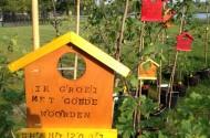 opbouw zomerbos 2012 - 1